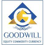 GOODWILL COMTRADERS PRIVATE LTD
